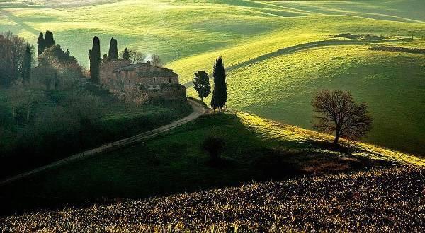 SayWine.it : tanti vini e formaggi, salumi, accessori per l'enologia