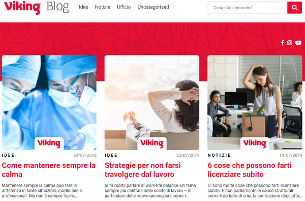 il blog di Viking