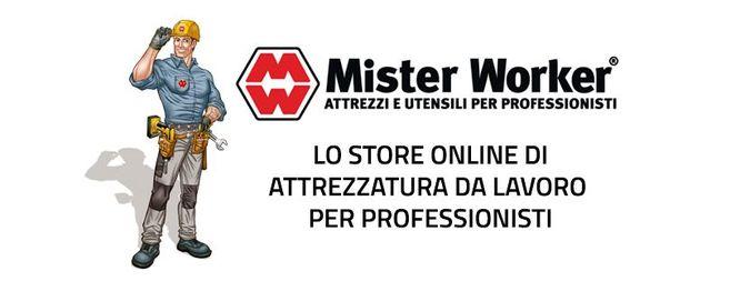 Gli articoli acquistabili su Mister Worker