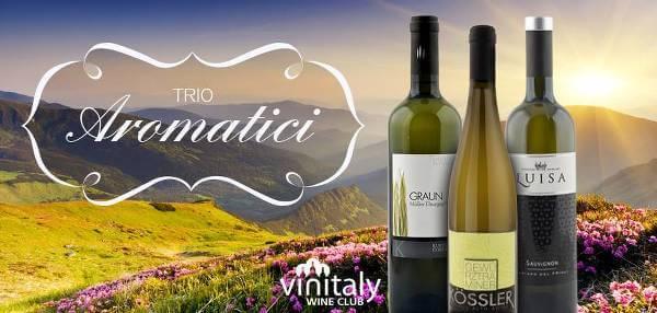 Una delle selezioni proposte dagli esperti del Vinitaly Wine Club