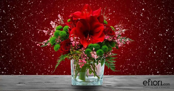 regalare fiori per le giuste occasioni