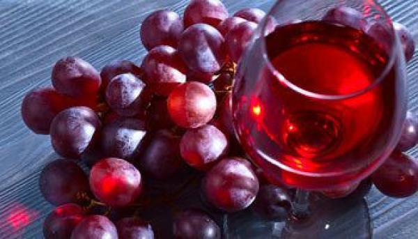 un viaggio enologico alla scoperta del vino giusto